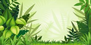 Illustration jungle landscape Royalty Free Stock Photos