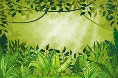 Illustration jungle landscape Royalty Free Stock Image