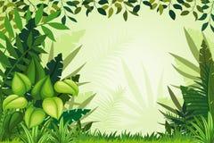 Illustration jungle landscape Stock Images