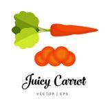 Illustration juteuse de carotte Photo libre de droits