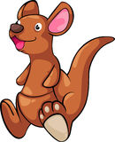 Illustration Kangaroo vector Stock Image