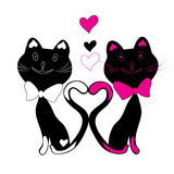Illustration kittens Royalty Free Stock Photography