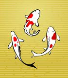 Illustration of koi fish Stock Photos