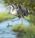 Illustration kran som jagar en groda i vattnet. Royaltyfria Bilder