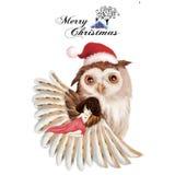 Illustration : La fille et le hibou - carte de Joyeux Noël Photographie stock libre de droits
