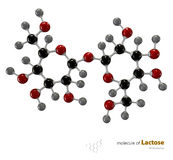 Illustration of Lactose Molecule isolated white background Stock Photography