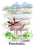 Illustration Landmark sketching wild reindeer in the Kamchatka. A peninsula in the north-eastern part of Eurasia in Russia vector illustration