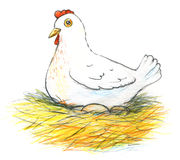 Illustration of a laying hen and her eggs on white background. Illustration of a laying hen and her eggs on a white background Royalty Free Stock Photography