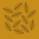 Illustration of Leaf. Outline Illustration of Leaf Stock Photography