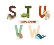 Illustration with letters and animals Royalty Free Stock Image