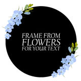 Illustration with light blue flowers, delphinium. With a black circle. For your text Stock Photography