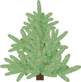 Illustration with light green fir. Illustration with green fir isolated on white background Stock Photo