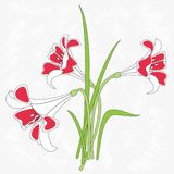 Illustration of lilies Royalty Free Stock Photos