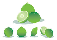 Illustration limes Stock Photo