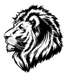 Lion Head Graphic. A  illustration of a lion Royalty Free Stock Photos
