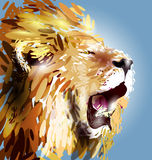Illustration of a lion's head. Vector illustration of a lion's head Royalty Free Stock Image