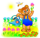 Illustration of little bear watering spring flowers. Stock Photography