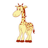 Illustration of little cartoon giraffe Royalty Free Stock Images