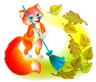 Illustration of little fox sweeping the leaves. Royalty Free Stock Image