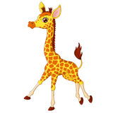 Illustration of little giraffe calf running Royalty Free Stock Image