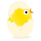 Chick with broken egg stock illustration