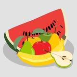 Illustration of logo for fruit set Royalty Free Stock Photos