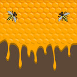 Illustration of logo for the theme of bees and honey Stock Photography