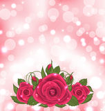 Luxury background with bouquet of pink roses Stock Photography
