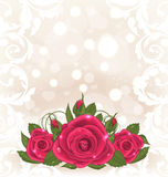 Luxury card with bouquet of pink roses Royalty Free Stock Image