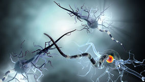 Illustration médicale, cellules nerveuses Image stock