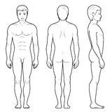 Illustration of male figure. Vector illustration of male figure - front, back and side view in outline Stock Photos