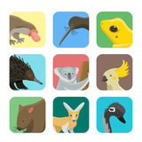 Illustration mammifère de vecteur de collection de nature de bande dessinée d'animaux sauvages d'Australie de style plat populair illustration de vecteur