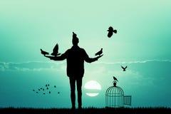 Man feeds the pigeons at sunset. Illustration of man feeds the pigeons at sunset Stock Photos