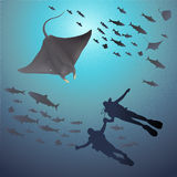 Illustration of Manta Ray and Divers under sea Royalty Free Stock Photos