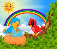 Many bird on the tree branch with rainbow scene Royalty Free Stock Images