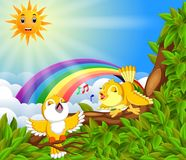 Many bird on the tree branch with rainbow scene Stock Photos