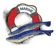 Illustration on the marine theme Royalty Free Stock Image