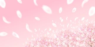 Cherry illustration material that imaged Japanese spring stock illustration