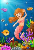 Illustration mermaid under the sea Royalty Free Stock Image