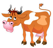 Illustration merry cow Stock Photography