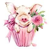 Illustration mignonne d'aquarelle de porc illustration libre de droits