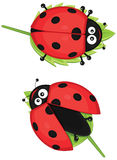 Illustration mignonne de coccinelle Photographie stock