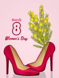 Mimosa in the female shoes Royalty Free Stock Images