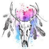 Illustration mit Rotwildscull und -federn Stockfotografie