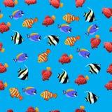 Illustration of Moorish Idol fish. Very high quality original trendy vector seamless pattern with Moorish Idol fish. Zanclus cornutus Stock Photography