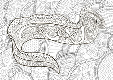 Illustration of a moray in zentangle style. Ugly and creepy fish with high details for anti stress coloring page, illustration of a moray in tracery style Royalty Free Stock Photography