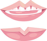 Illustration mouth Stock Image