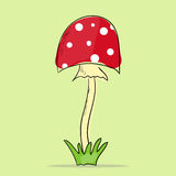 Illustration of Mushroom amanita Royalty Free Stock Photo