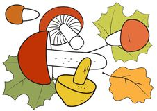 Mushrooms and autumn leaves Stock Photos