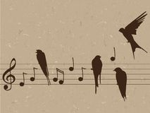Illustration of music notes with birds Royalty Free Stock Images
